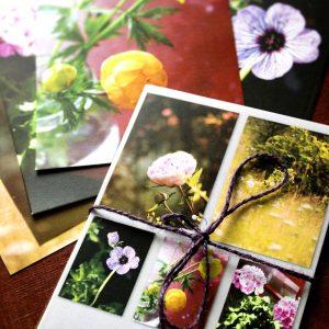 Blomkort – 5st vykort